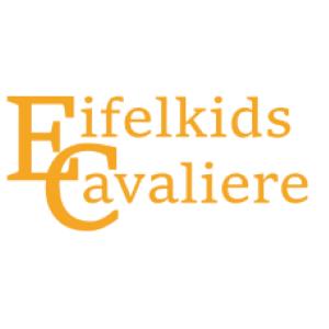 Eifelkids King Charles Cavaliere